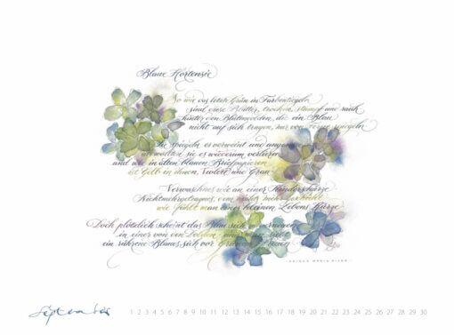 Blaue Hortensie Kalligrafie