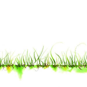 Das Gras wächst nicht schneller, indem man daran zieht