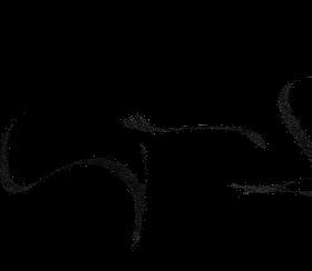 Kurse Schriftzug